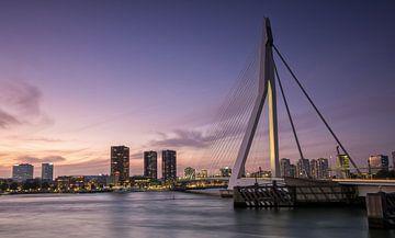 De Zwaan van Rotterdam (Erasmusbrug) van Remco Lefers