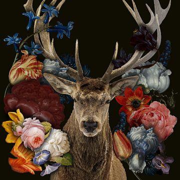 Rothirsch in den Blumen von John van den Heuvel