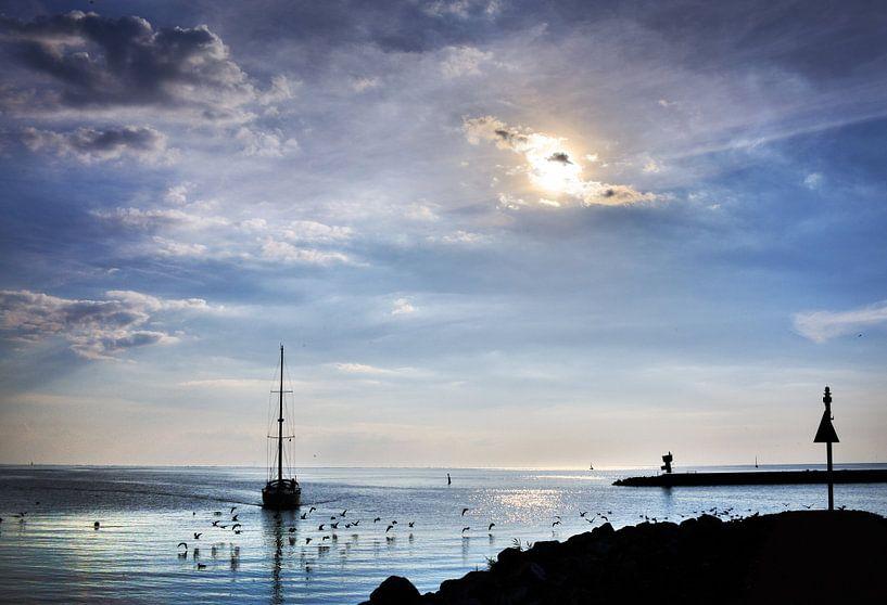 Binnenkomst/Entering the harbour van Harrie Muis