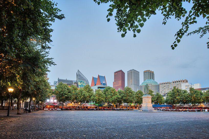 Den Haag van Eric van Nieuwland