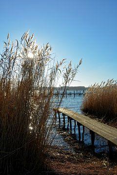 Aan het meer van Claudia Evans