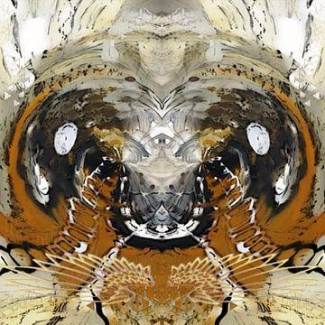 Insecten van Annabella Rharbaoui