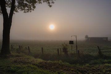 Nebel in der Betuwe von Moetwil en van Dijk - Fotografie
