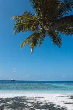 Tropisch mit Strand auf den Malediven von Michiel Dros