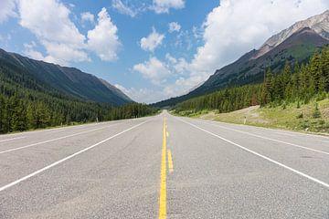 Route 40 van Jan Peter Mulder