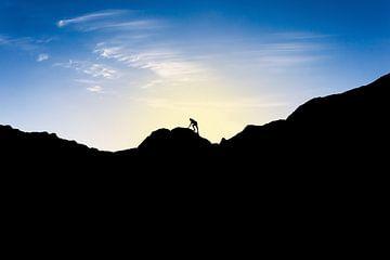 Silhouette van man die berg beklimt bij ondergaande zon. Wout Kok One2expose van