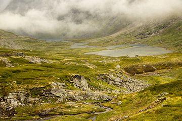 Nebeltag, eine grüne Landschaft mit einem See in Norwegen von Karijn Seldam
