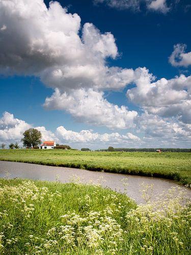 Zeeuws-Vlaanderen van Ellen Driesse