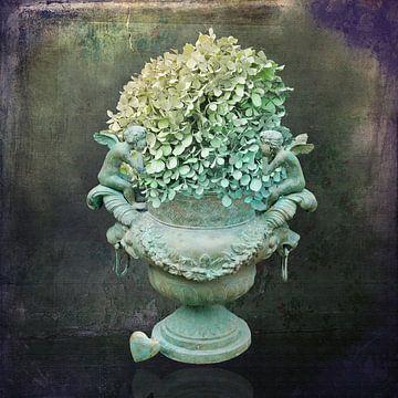 Hortensia stilleven van Carla van Zomeren