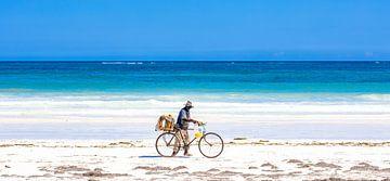 Plage blanche tropicale avec mer azur et ciel bleu et un cycliste sur Steven World Traveller
