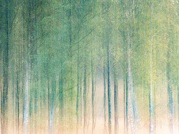 het berkenbos van Henk Goossens