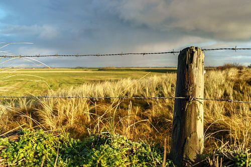 Waddeneiland landschap op Texel