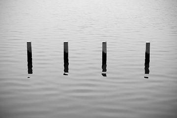 Pole im See | minimalistisch schwarz und weiß von ellenklikt