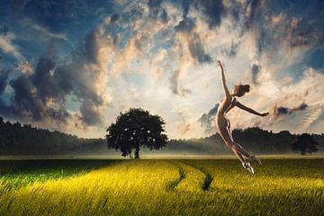 Balletsprong in het veld van Arjen Roos