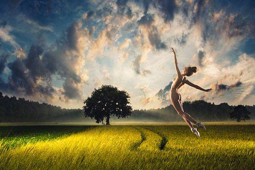 Balletsprong in het veld