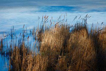 Bij het meer van Thomas Jäger