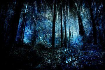 Aan het eind van een bos #04 van Peter Baak
