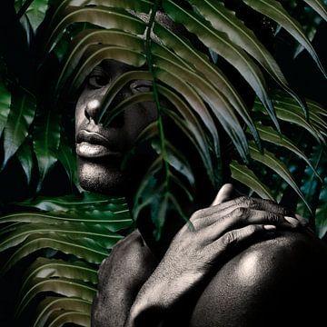 Jungle van toon joosen