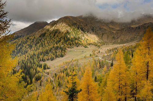 Herfstkleuren in de Alpen.