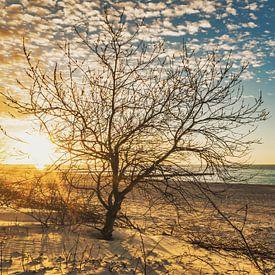 Sunset sur Gunter Kirsch