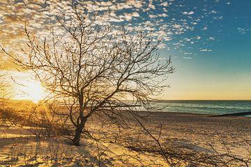 Sonnenuntergang von Gunter Kirsch