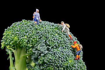 Broccoli van Arie Kraaijeveld