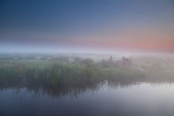 Waking up in fog