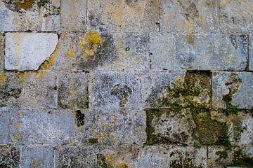 Frankreich - alte Mauer von Francisca Snel