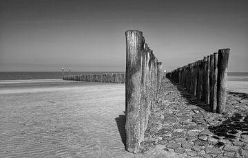 Strandwachters van