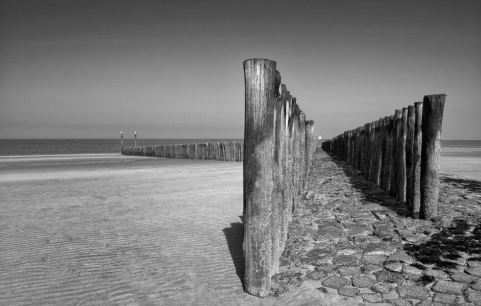 Strandwachters van Ellen Driesse