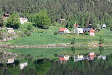 Reflectie van Eikhomøya van Stephan Neven
