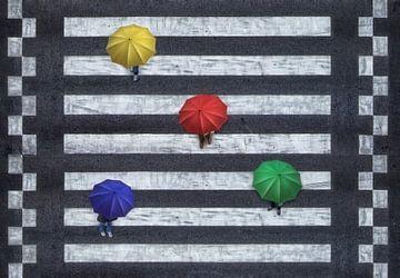 Vierfarbige Schirme auf Zebrastreifen von Marcel van Balken