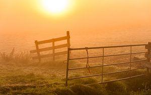 zonsopkomst in het weiland van