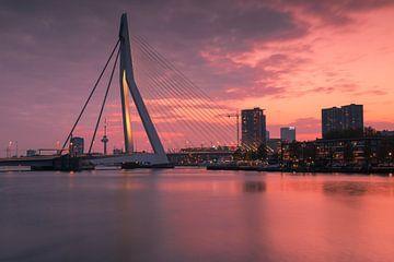 Die Erasmus-Brücke bei Sonnenuntergang von Ilya Korzelius