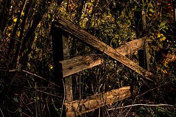 herfst hek von Wilma Meurs
