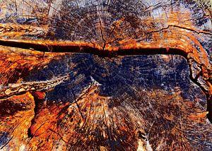 TreeScape 14 van MoArt (Maurice Heuts)