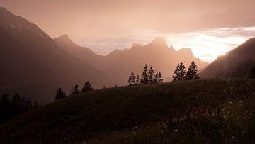 Regenschauer mit Sonne von Karl Majewski