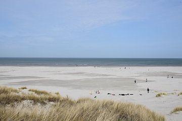 Nordseestrand von Ameland von Tjamme Vis