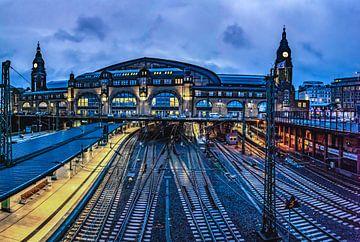Hamburgs centraal station van Johnny Flash