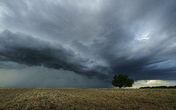 Stormfront van Ronny Rohloff