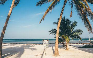 Tropisch strand op Caye Caulker in Belize van Michiel Dros