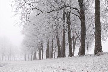 Paysage d'hiver glacial lors d'une matinée brumeuse sur Sjoerd van der Wal