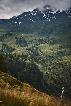 Alpenansicht 4 von Bart Rondeel