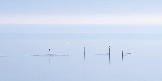 Gouwzee in de mist, 4x2 van Monika Wolters