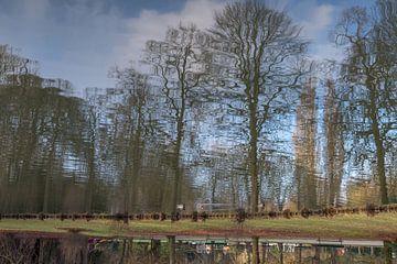 Spiegelbeeld in het stadspark te Aalst van didier de borle