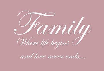Family - Roze van Sandra H6 Fotografie