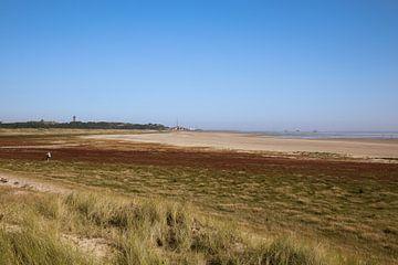 Die Brandaris auf Terschelling vom Grünstrand aus von Jolanda Kleij
