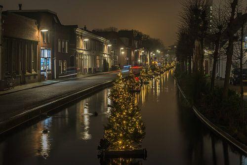 kerstboompjes aan de Karnemelksloot Gouda van