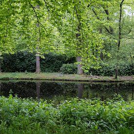 Groene lente kaders van Carla van Zomeren