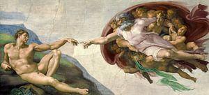 Schepping van Adam, Michelangelo van